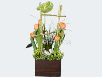 Tulipanes con Anturio