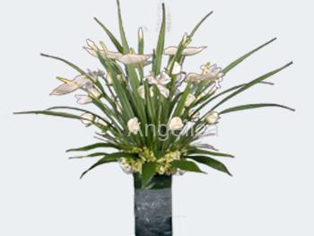 Anturios Blancos y Rosas Blancas