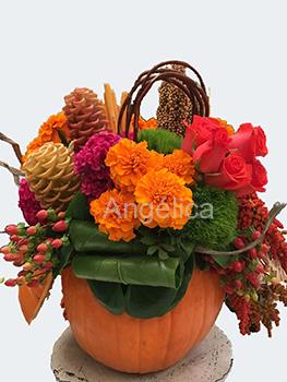 Calabaza floral