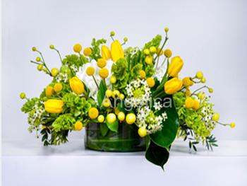 Arreglo Tulipanes Amarillos Panera