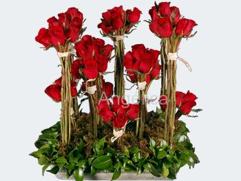 Arreglo en Bouquets de Rosas Rojas