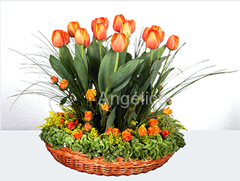 Arreglo de Tulipanes Naranjas con Rosas Baby
