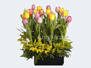 Arreglo de Tulipanes Surtido de Colores